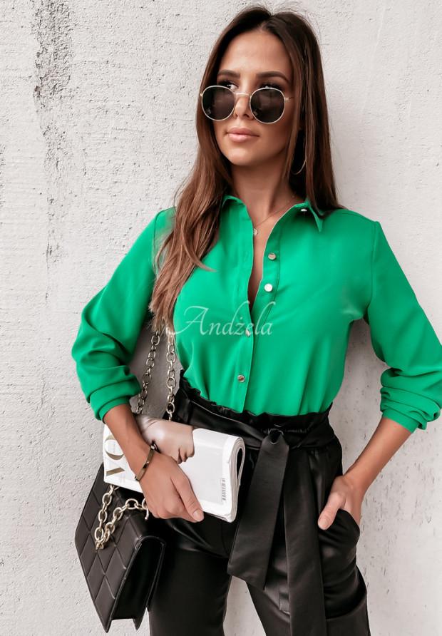 Koszula Ordinary Green