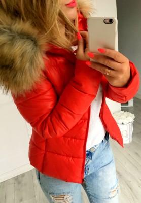 Kurtka Best Red